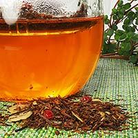 Rooibos - Alternative brew