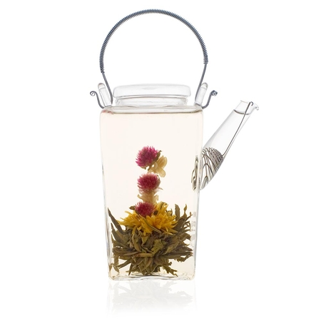 Shan Glass Teapot new handle
