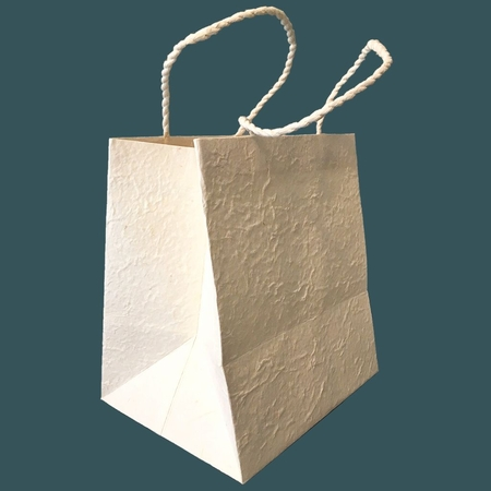 Luxury Gift Bag